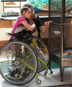 A young girl with disabilities in a green stander looks inside a cage as her therapist points to a bird